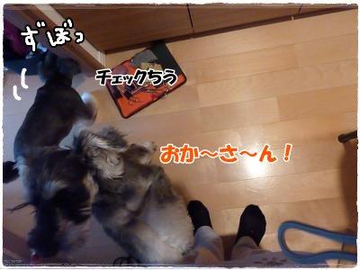 12_22+026_convert_20111222183756.jpg