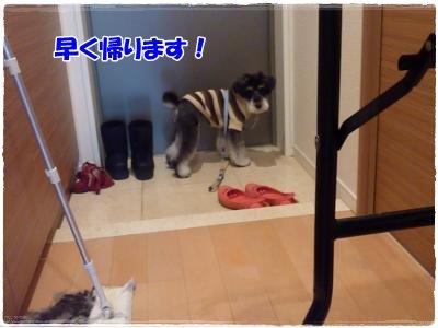 12_22+054_convert_20111222184259.jpg
