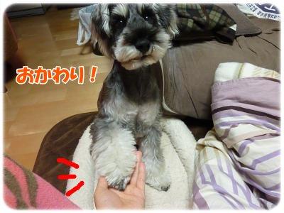 12_23+013_convert_20111223214620.jpg
