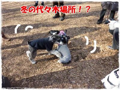 12_26+030_convert_20111226104203.jpg