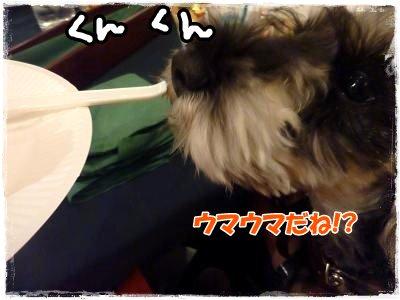 12_26+358_convert_20111228110919.jpg
