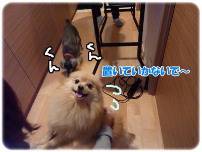12_28+001_convert_20111228202014.jpg