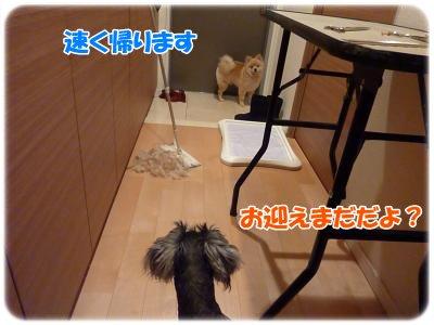 12_28+022_convert_20111228203259.jpg
