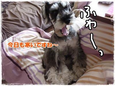 12_28+031_convert_20111230003351.jpg