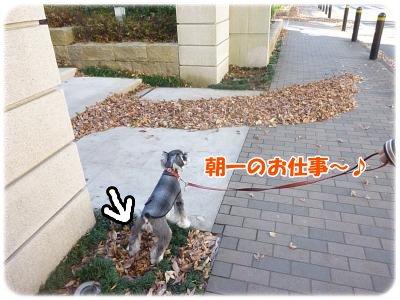 12_4+021_convert_20111206094129.jpg