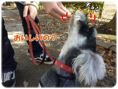 12_4+028_convert_20111206094239.jpg