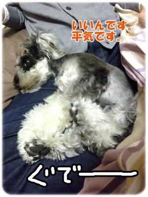 12_7+004_convert_20111207145325.jpg