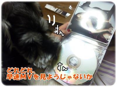 12_8+006_convert_20111208181240.jpg