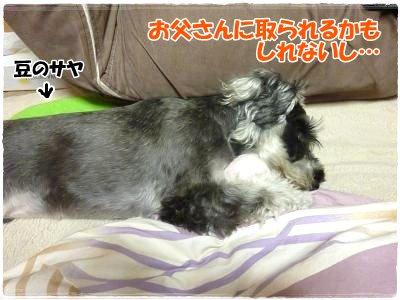 12_8+011_convert_20111215102537.jpg