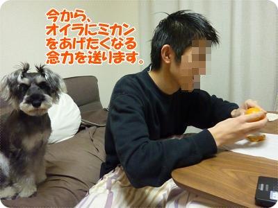 1_11+005_convert_20120111184836.jpg