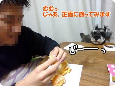 1_11+007_convert_20120111184911.jpg