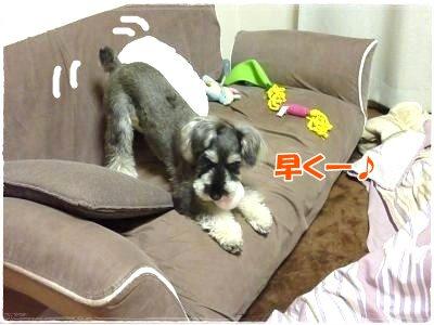 1_14+006_convert_20120114094345.jpg