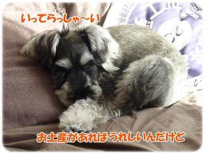 1_14+013_convert_20120131211157.jpg