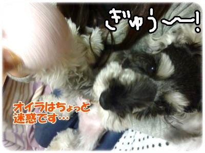 1_15+052_convert_20120116190607.jpg