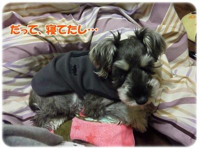 1_17+017_convert_20120118193147.jpg