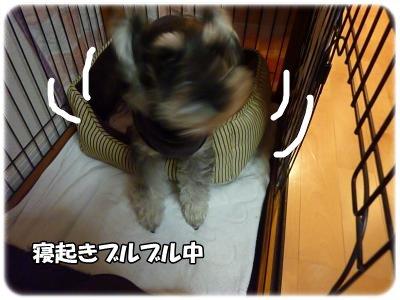 1_18+029_convert_20120118192827.jpg