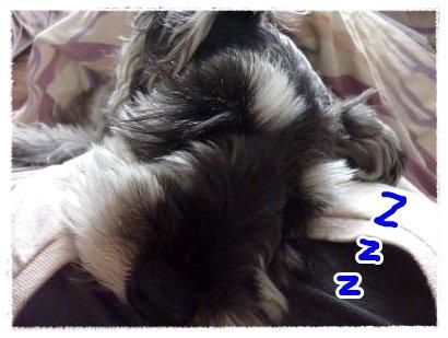 1_20+009_convert_20120120143844.jpg