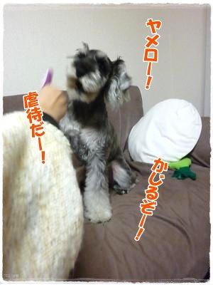 1_22+009_convert_20120122181126.jpg