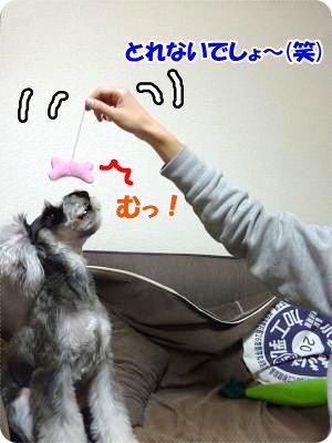 1_23+017_convert_20120123180739.jpg