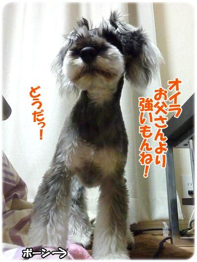 1_23+026_convert_20120123180947.jpg