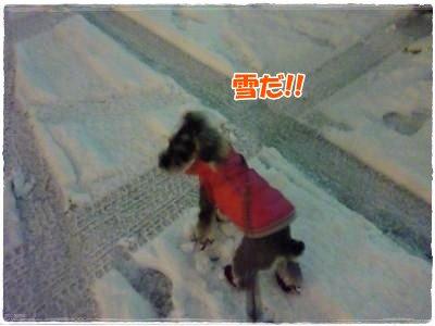 1_24+003_convert_20120124182237.jpg