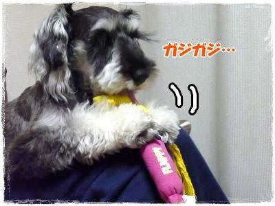 1_24+025_convert_20120129170811.jpg