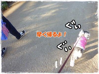 1_29+019_convert_20120129162553.jpg