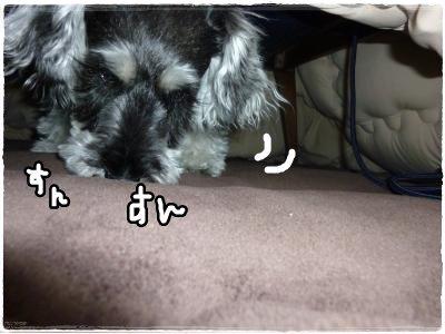 1_29+036_convert_20120129162901.jpg