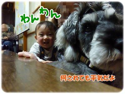 1_3+193_convert_20120103200417.jpg