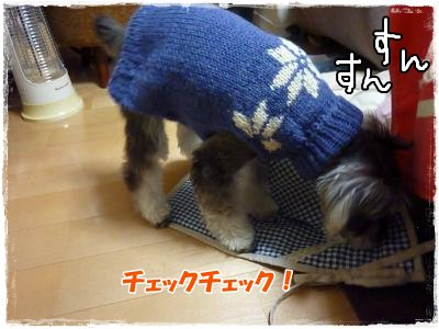1_3+241_convert_20120104180943.jpg