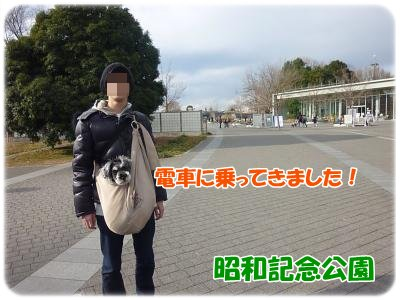 1_4+001_convert_20120105191914.jpg