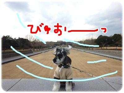 1_4+013_convert_20120105192312.jpg