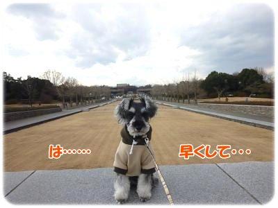 1_4+015_convert_20120105192346.jpg
