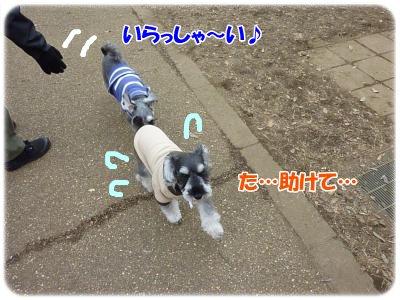 1_4+054_convert_20120105192746.jpg
