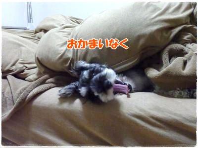 1_7+021_convert_20120108120230.jpg