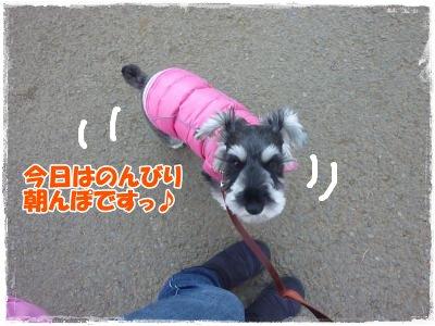 1_7+031_convert_20120107121612.jpg