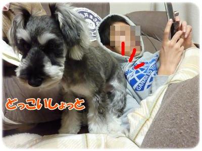 1_9+006_convert_20120110103700.jpg