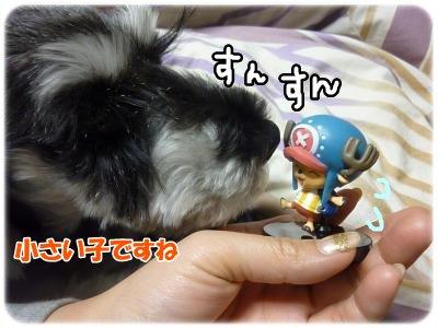 1_9+011_convert_20120110103728.jpg