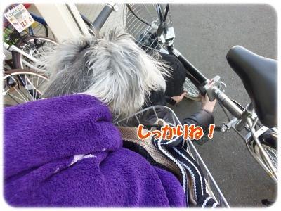 1_9+018_convert_20120109110234.jpg