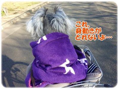1_9+019_convert_20120109110253.jpg