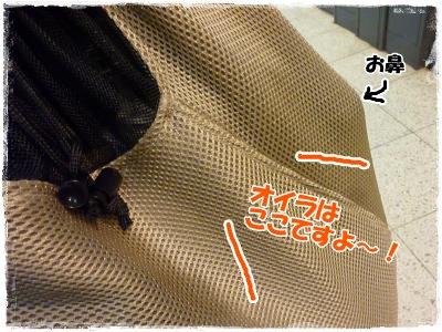 2_11+004_convert_20120211201314.jpg