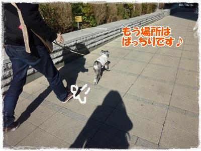 2_11+006_convert_20120211201537.jpg