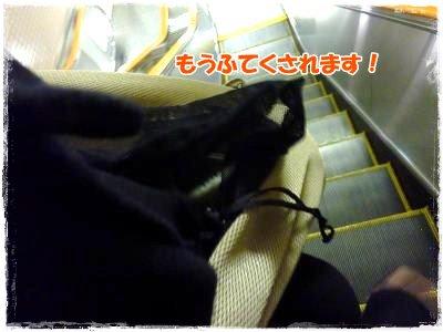 2_11+046_convert_20120211202204.jpg