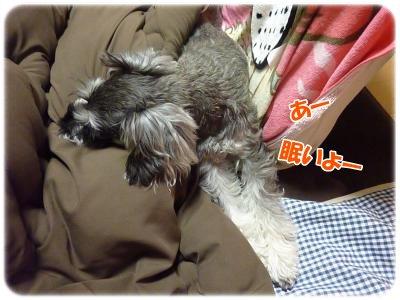 2_15+008_convert_20120216211833.jpg