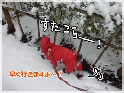 2_29+003_convert_20120229190136.jpg