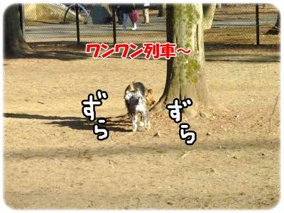 2_5+055_convert_20120205114022.jpg