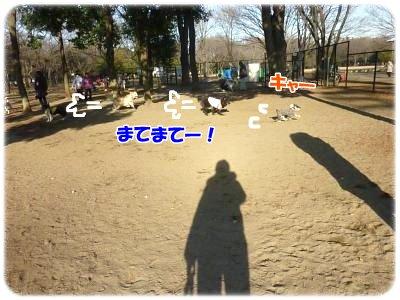 2_5+063_convert_20120205110542.jpg