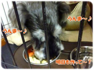 2_8+022_convert_20120208194614.jpg