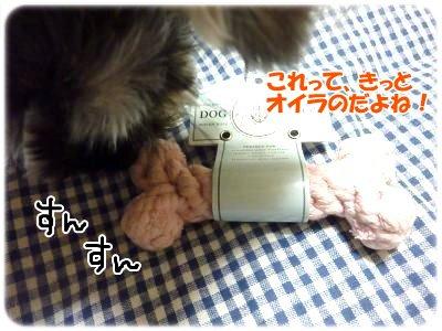 2_8+027_convert_20120208194828.jpg
