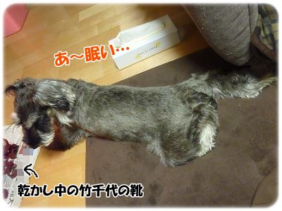3_1+002_convert_20120302184901.jpg